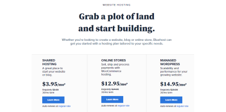 Bluehost Hosting Plans Review